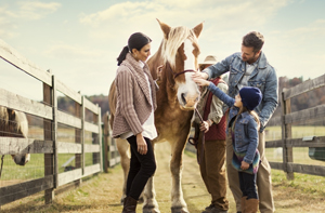 Family petting a horse in the farmyard.