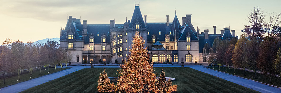 evening view of biltmore house from front lawn with huge lit tree