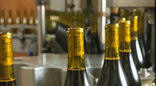 wine bottles in the bottling plant