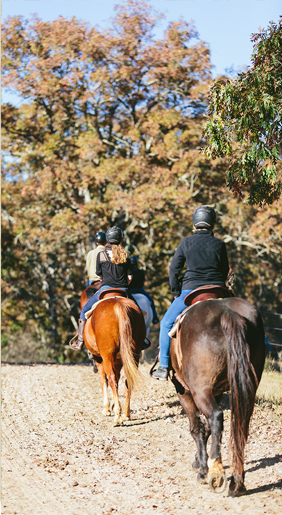 trail riders at biltmore