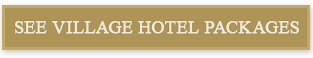 see hotel packages button