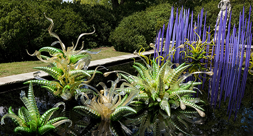 Glass sculptures in curving spiral spikes of greens with yellow and white resembling plants, in a pond. In background, purple spikes of glass resemble tall stalks coming out of the water.