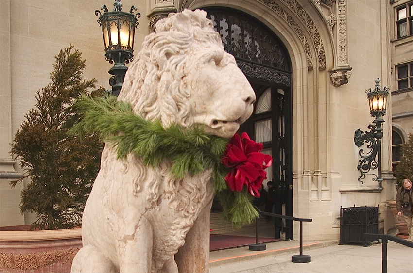 Christmas-lion