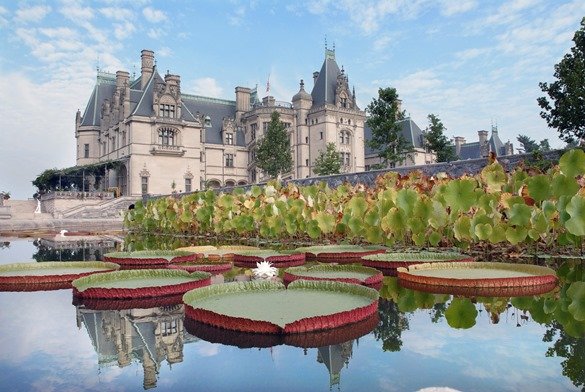 Biltmore Gardens Tour