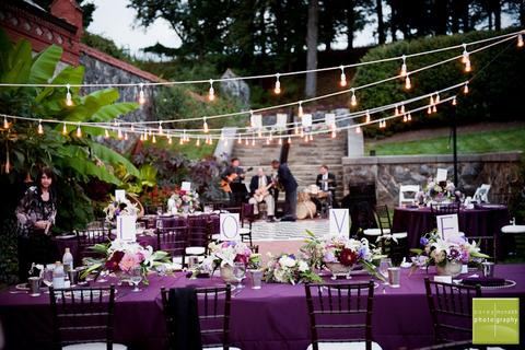 Purple-themed event set up