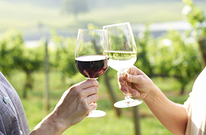a hand holding a glass of white wine and a hand holding a glass of red toast with vineyards in the background