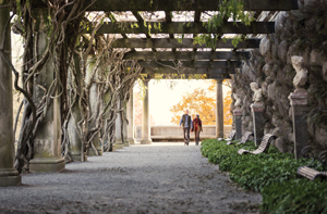 two people walk under wisteria-covered pergola near Biltmore House