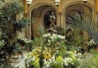 The Winter Garden inside the house is full of cheer and warmth during peaceful Winter at Biltmore.