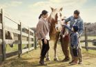 Families love visiting the animals in our farmyard, including chickens, roosters, goats, sheep and friendly horses.