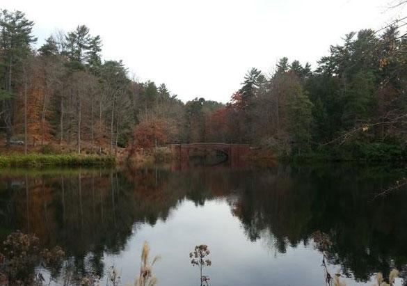 Building bridges at biltmore biltmore for Bass pond construction