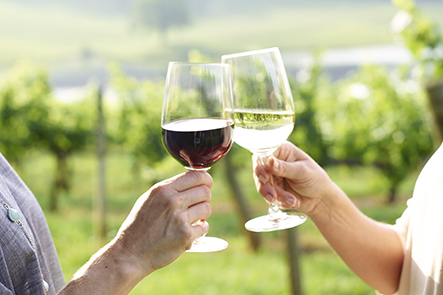 two hands toasting with red and white wine with vineyards in background