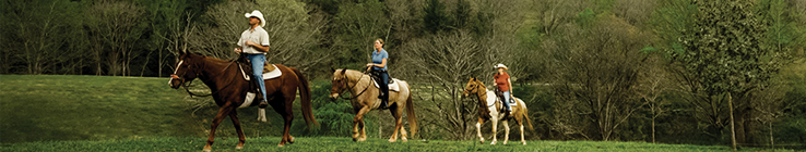 people on horseback near Biltmore House