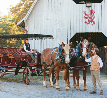 The Biltmore Carriage outside the Carriage Rides & Trails barn preparing for a ride
