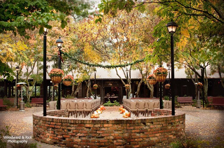 Deerpark Courtyard