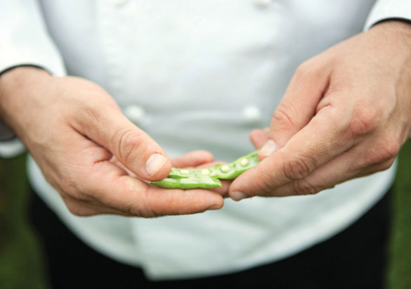 Taste of Biltmore Culinary Showcase