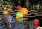 Dale Chihuly, <i>Niijima Floats</i>, 2005, Fairchild Tropical Botanic Garden, Coral Gables, Florida, © Chihuly Studio