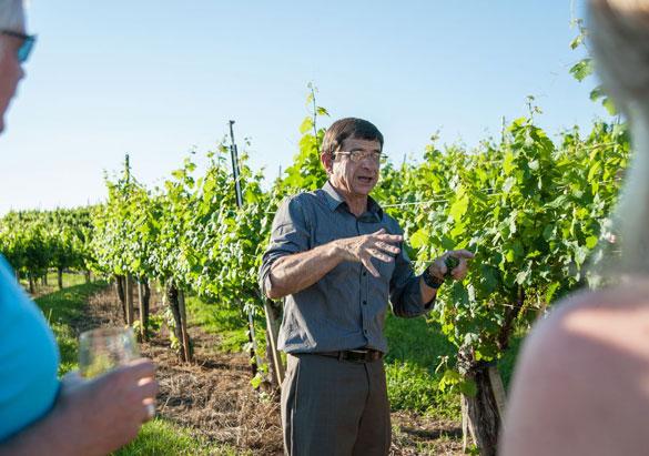 Bernard Delille in Biltmore's vineyard