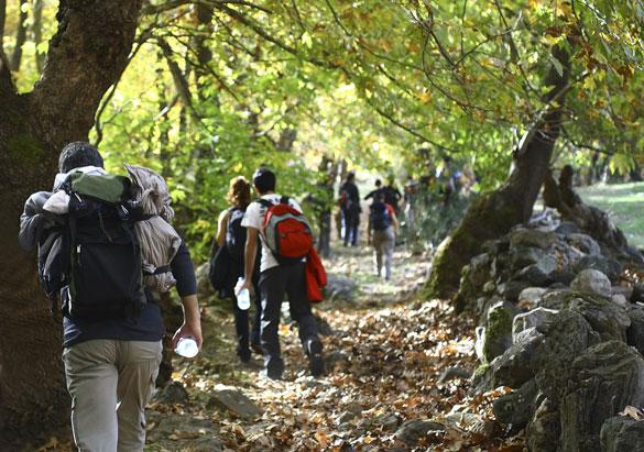 Guests enjoying a guided hike at Biltmore