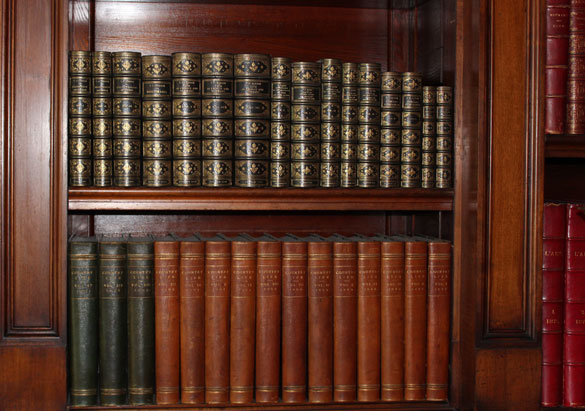 Books on shelves in Biltmore's Library