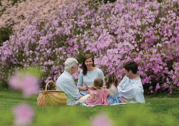 A family picnic in Biltmore's gardens