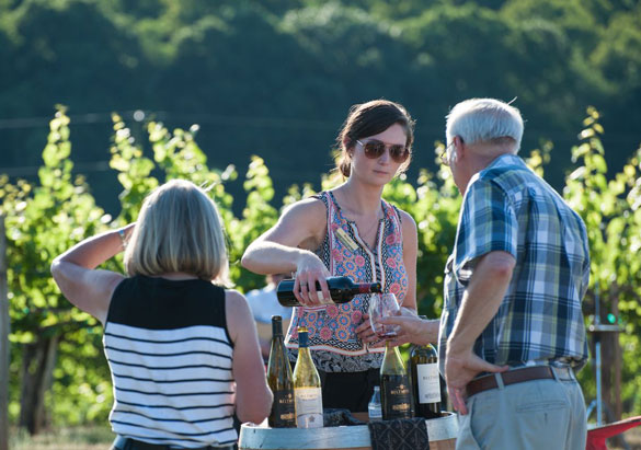 Pouring Biltmore wine outdoors at the vineyard