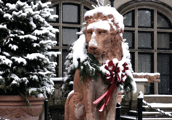 Snow on one of the marble lions at Biltmore