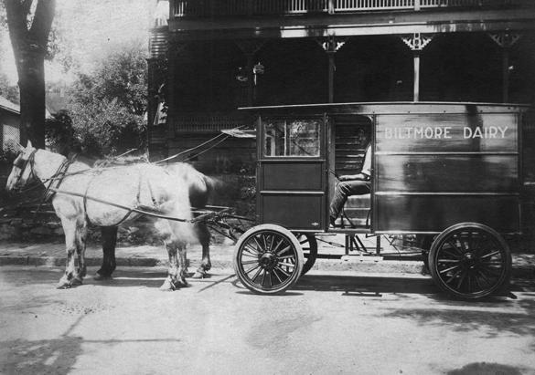 Biltmore Dairy delivery wagon, ca. 1900