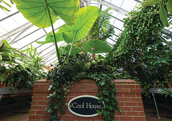 Biltmore Conservatory Cool House