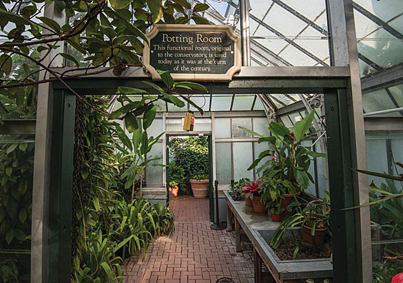 Biltmore Conservatory Potting Room