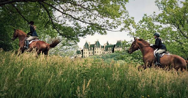 Equestrian At Biltmore | Biltmore