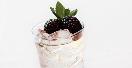 Biltmore Sparkling Blackberry Punch
