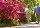 Azalea garden couple