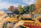 Walled garden fall 12x8