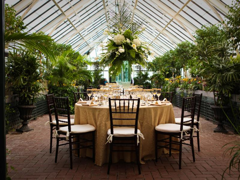 tables set up for an event with greenery all around