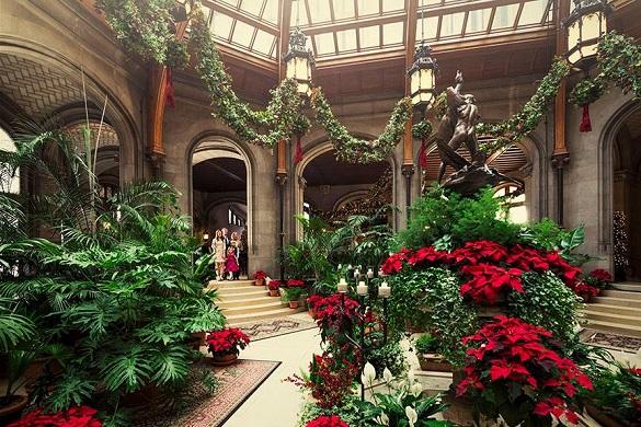 Behind Biltmore Poinsettias | Biltmore