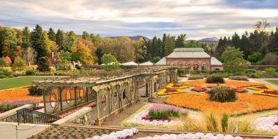 Fall-walled-garden-18