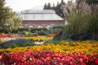 Summer walled garden