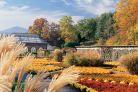 Walled garden fall