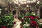 Biltmore 2013 trg christmaswintergarden