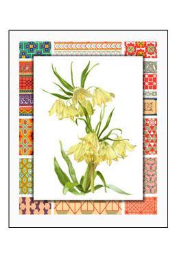 Bordered Botanicals II