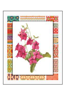 Bordered Botanicals IV