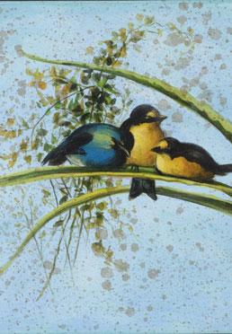 Songbirds I, II, III
